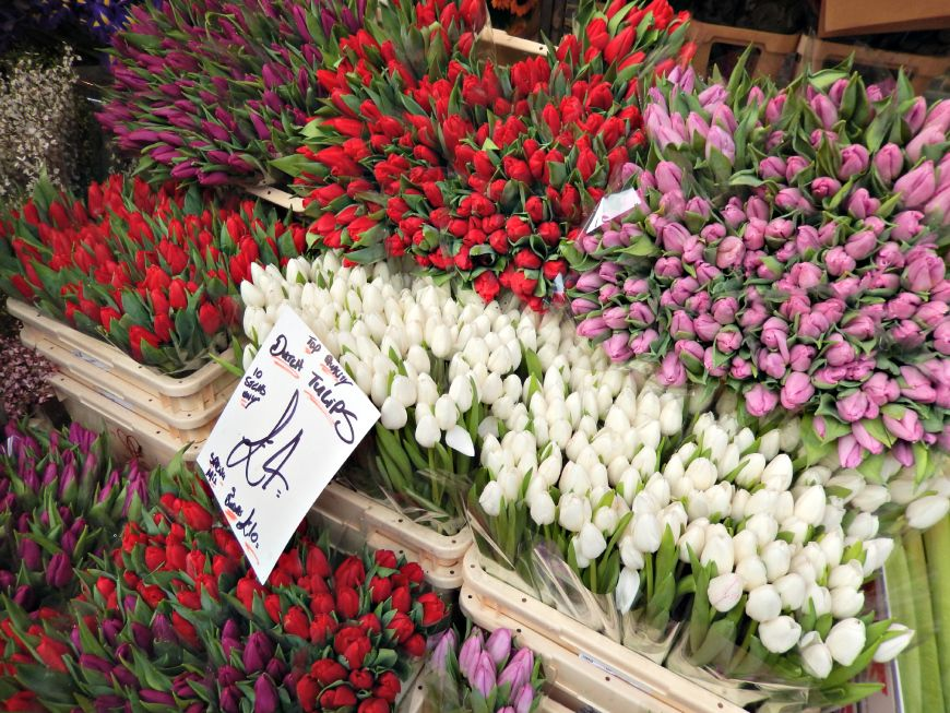 Columbia Road Market: How to get the most out of your visit