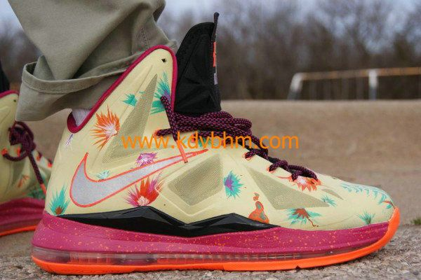 best sneakers b429d bb665 LeBronold Palmer Nike LeBron 10 for sale