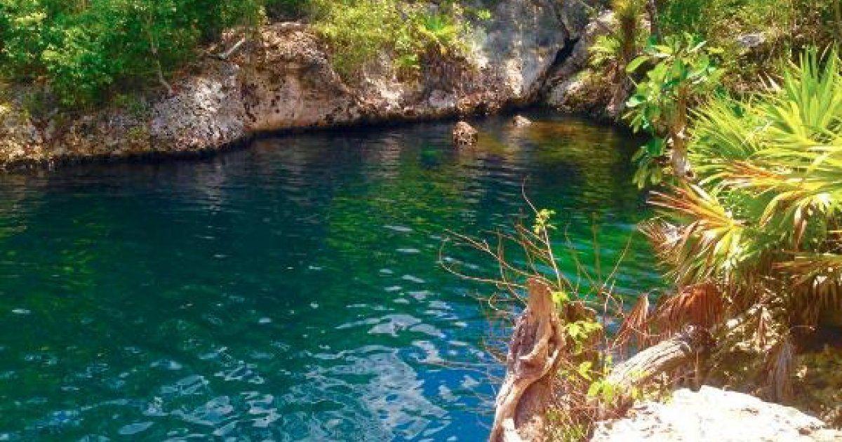 Ubicado en las proximidades de Playa Larga, en la Ciénaga de Zapata, esta es una de esas maravillas de la naturaleza cubana que muchos aún desconocen