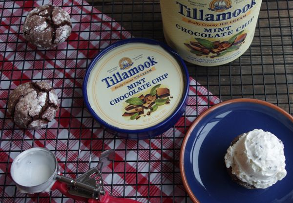 Image Result For Tillamook Ice Cream Mint Chocolate Chip