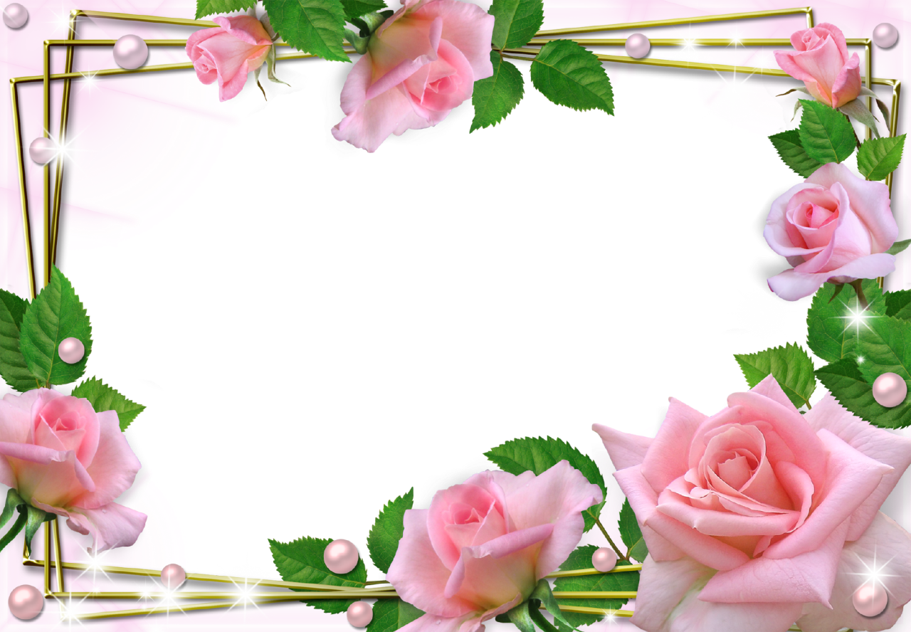 Beautiful Pink Roses Photo Frame Png 1280 888 Picture Frame Designs Unique Picture Frames Rose Frame