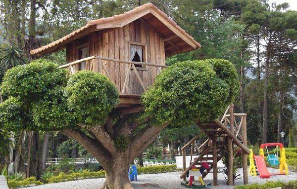 El Blog de Norio Reyes Casas en arboles CASA EN LOS ARBOLES - casas en arboles