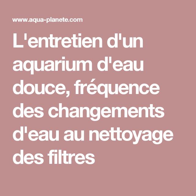l 39 entretien d 39 un aquarium d 39 eau douce fr quence des changements d 39 eau au nettoyage des filtres. Black Bedroom Furniture Sets. Home Design Ideas