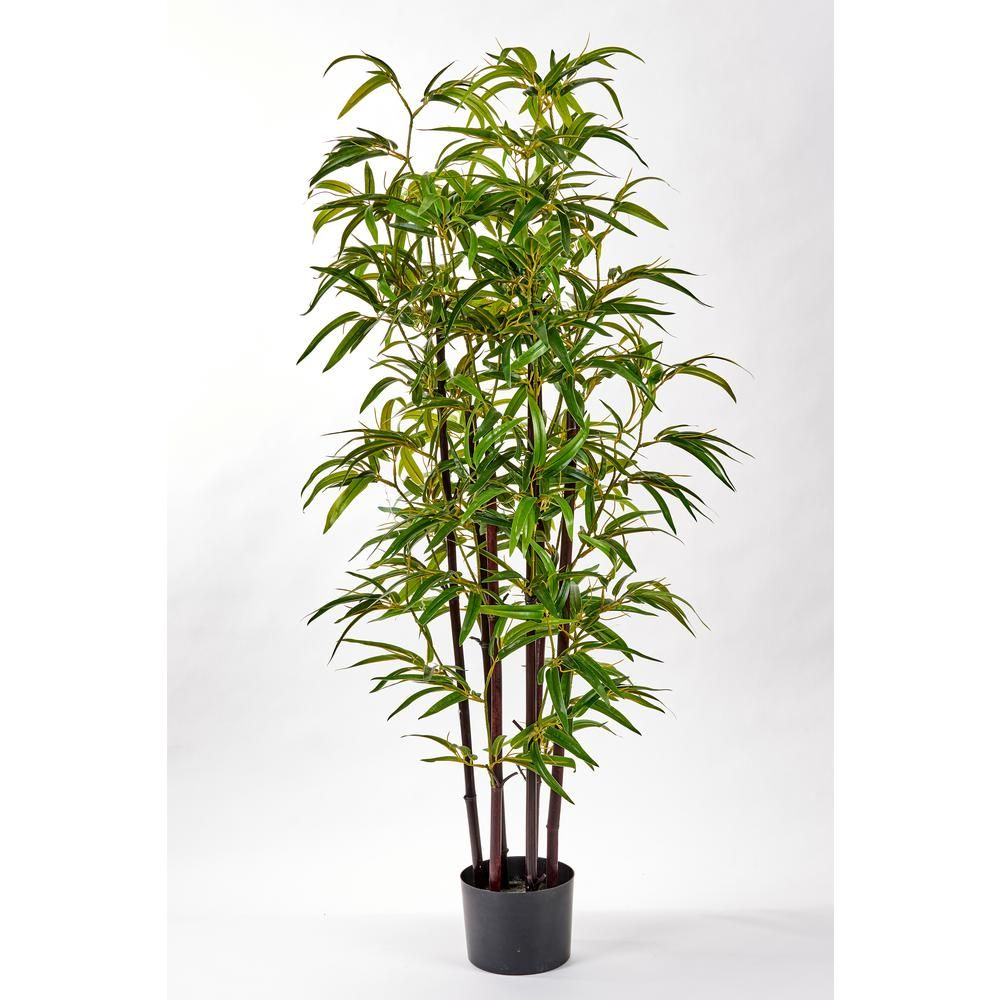 Worth Imports 49 In Bamboo Tree With Black Trunk In Pot 3290