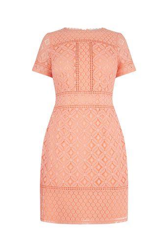Oasis, ISLA LACE SHIFT DRESS Coral | Bridesmaid Dresses