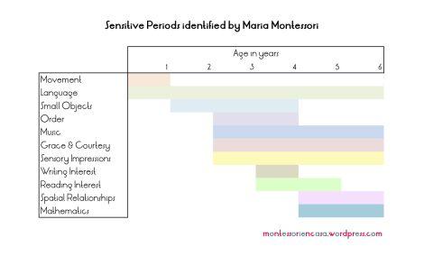 what are the six sensitive periods montessori