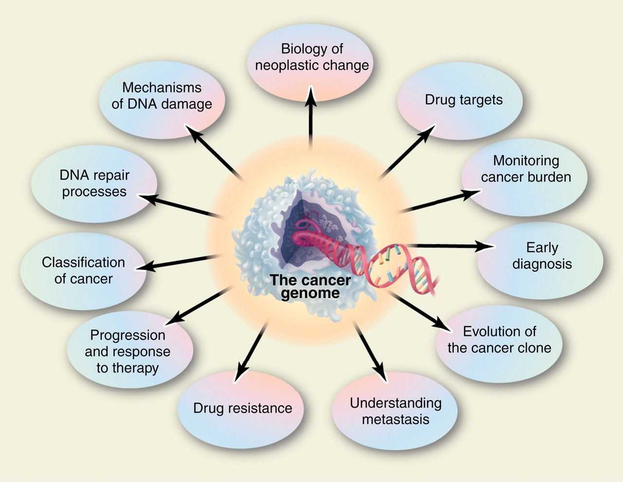 Immunotherapy With Images