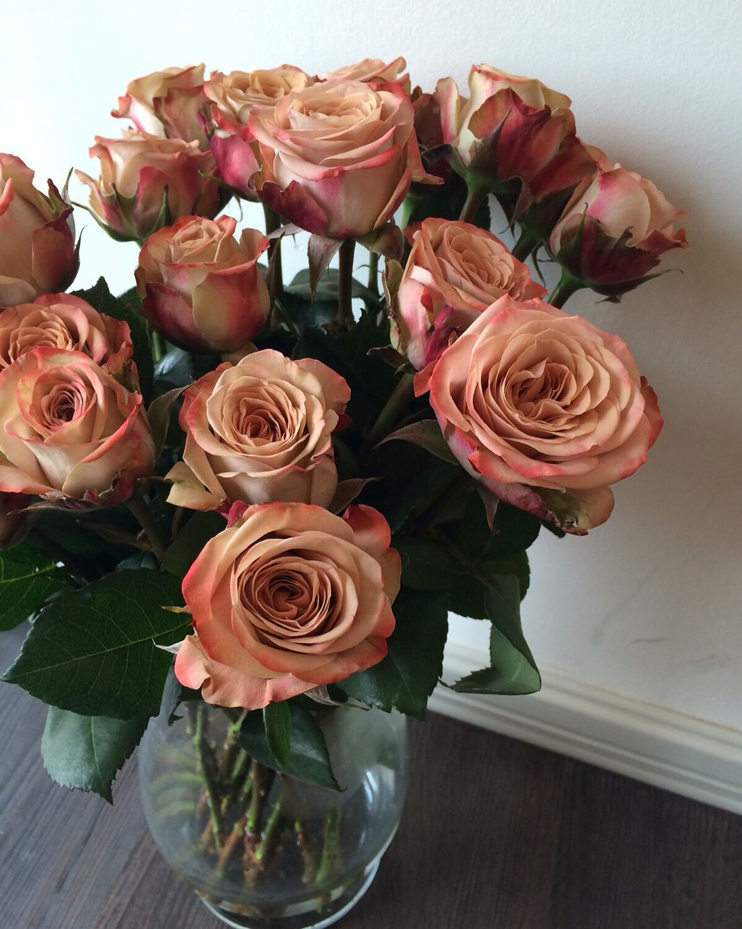 Fresh in store today!! Kenya cappuccino roses! Pls drop by to pick