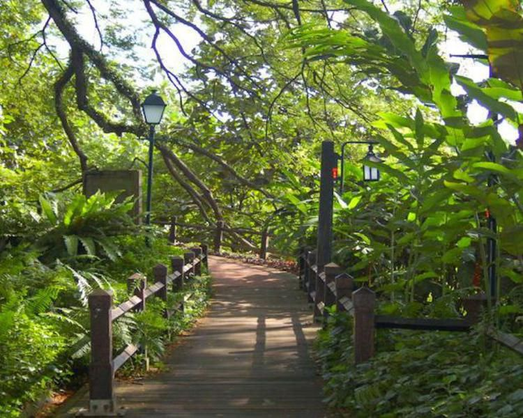 Fort Canning Park Singapore Nature Vacations Rontops