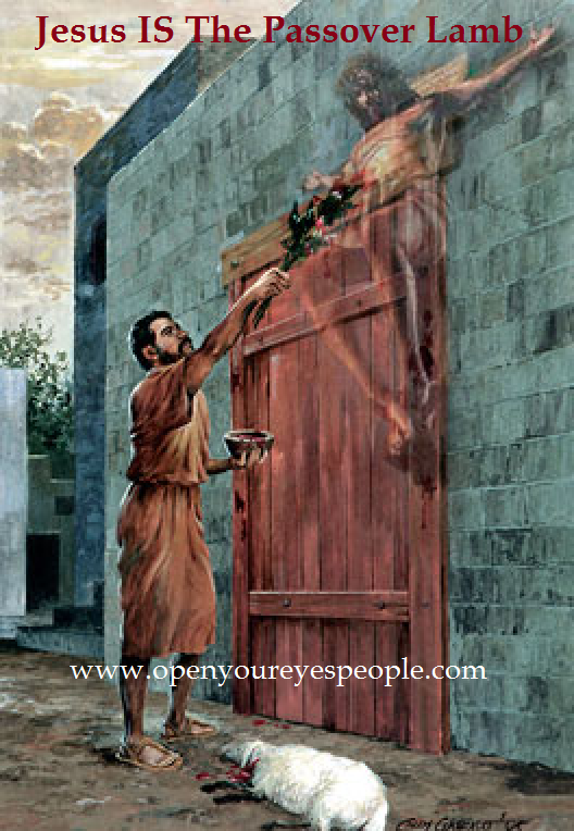 Jesus Our Passover Lamb | Bible artwork, Biblical artwork ...