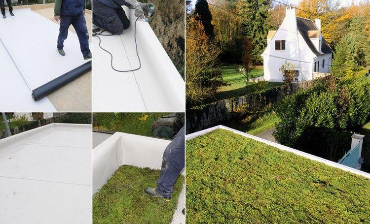 comment bien tanch ifier une toiture v g taliser. Black Bedroom Furniture Sets. Home Design Ideas