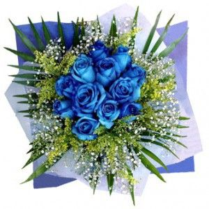 Where To Buy Blue Roses Online