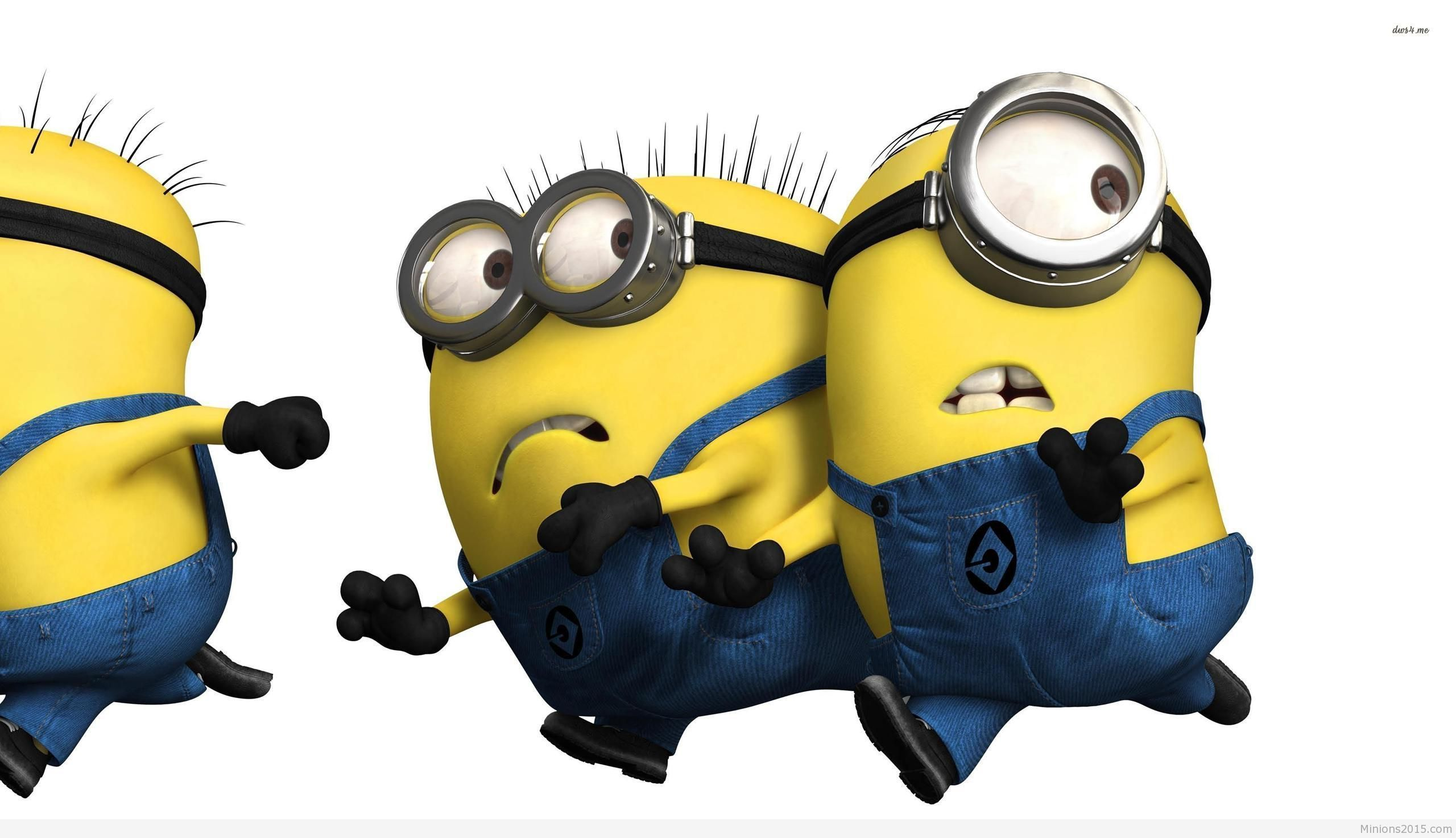 Despicable Me Wallpapers 50 Wallpapers Hd Wallpapers