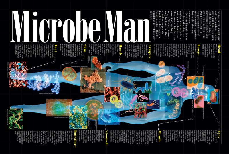 Microbes_1011.jpg (800×541)