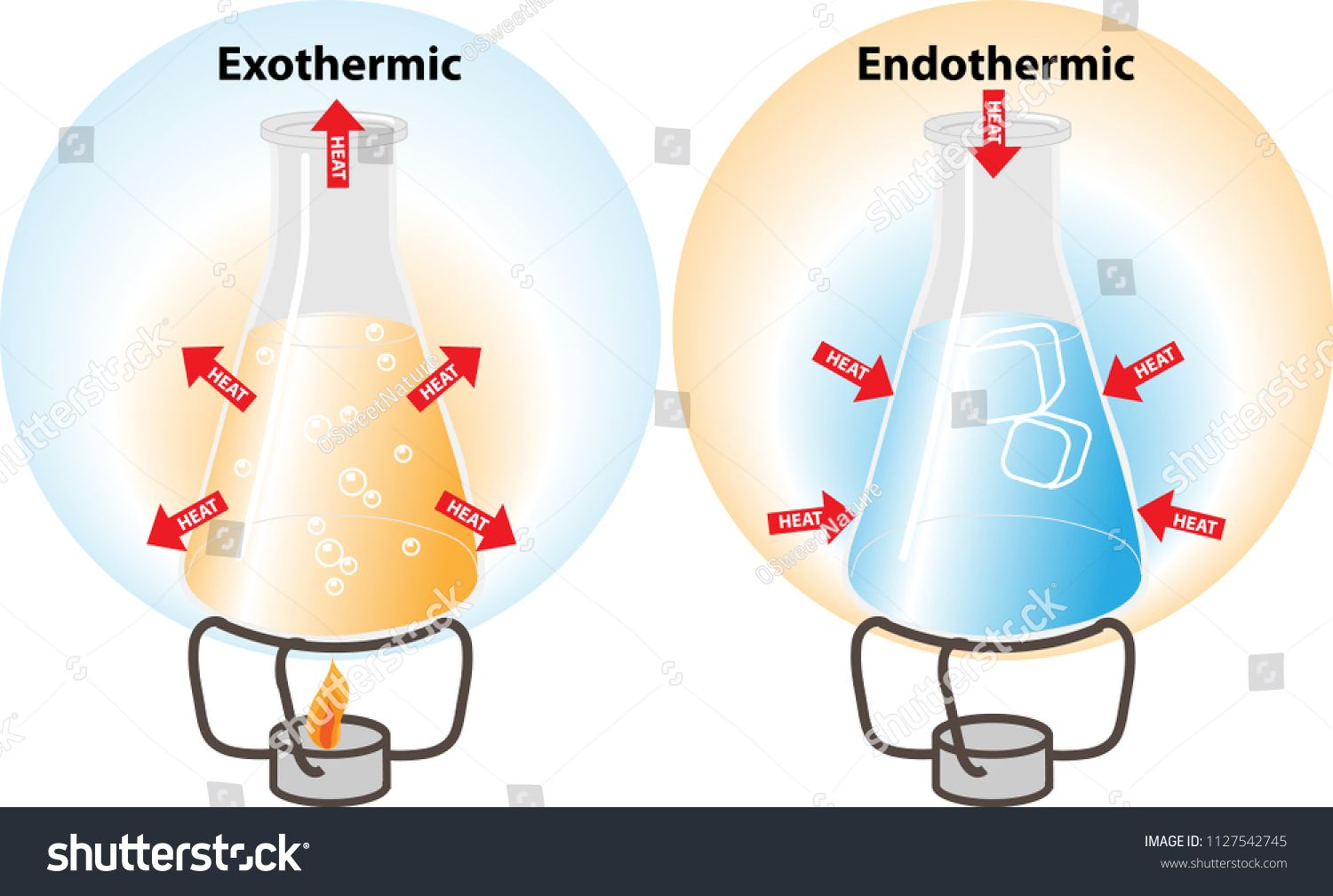 Endothermic And Exothermic Reactions As Shown In Chemical