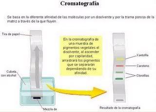 Pin En Quimica
