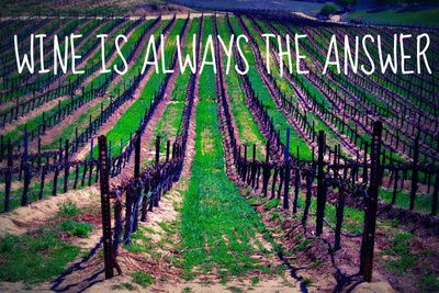Wine is Always the Answer