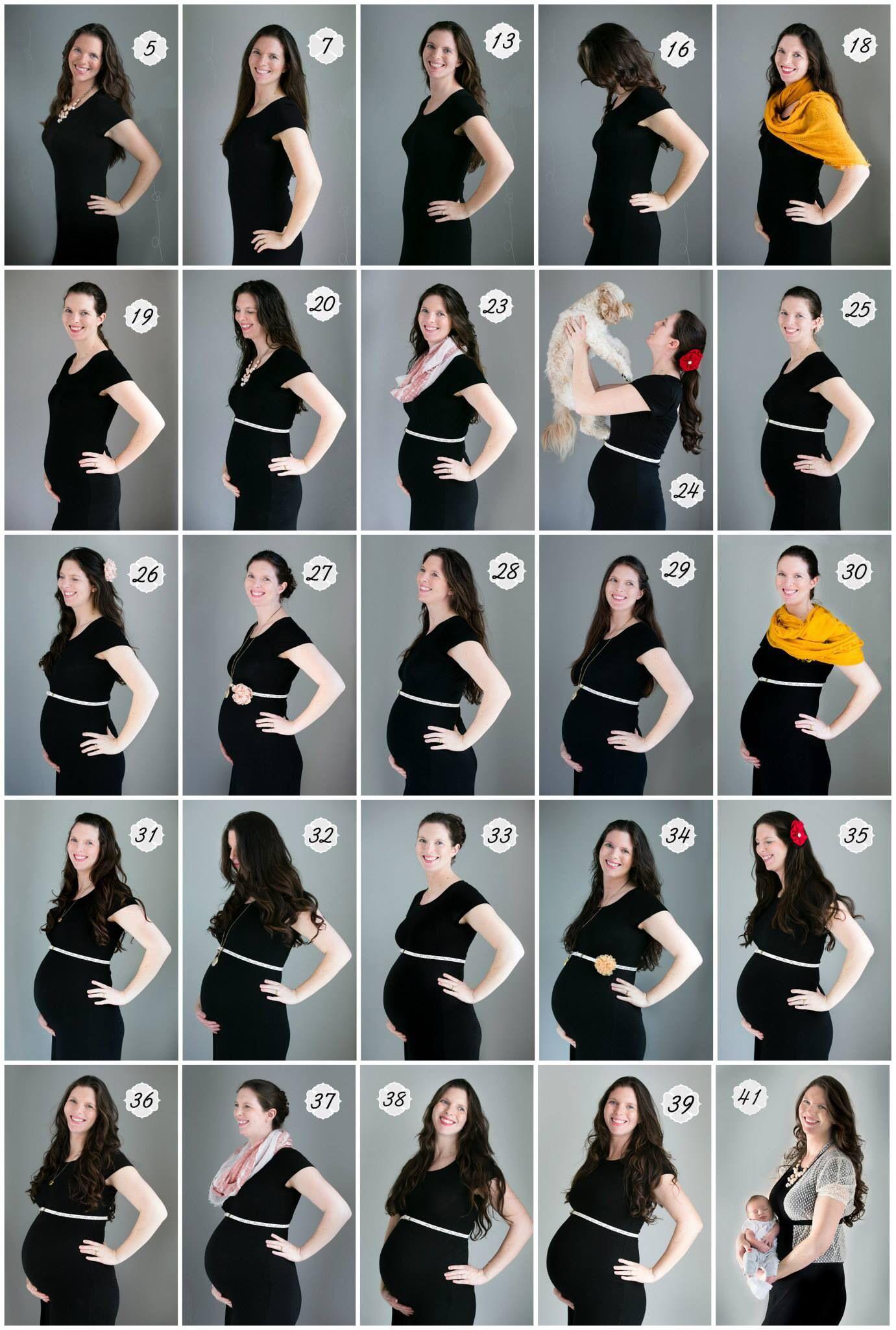 Картинки с неделями беременности для фото