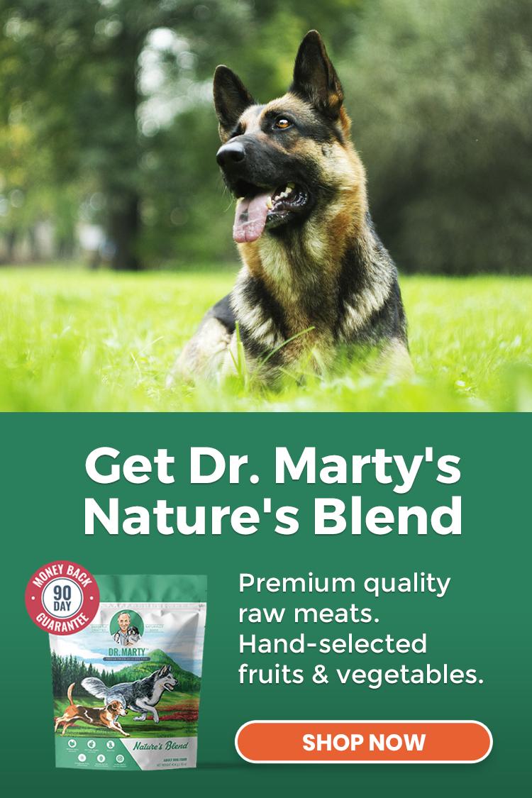 dr marty's blend