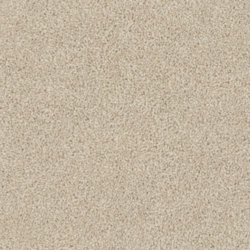 Shaw Fastball Carpet Lets See Carpet New Design