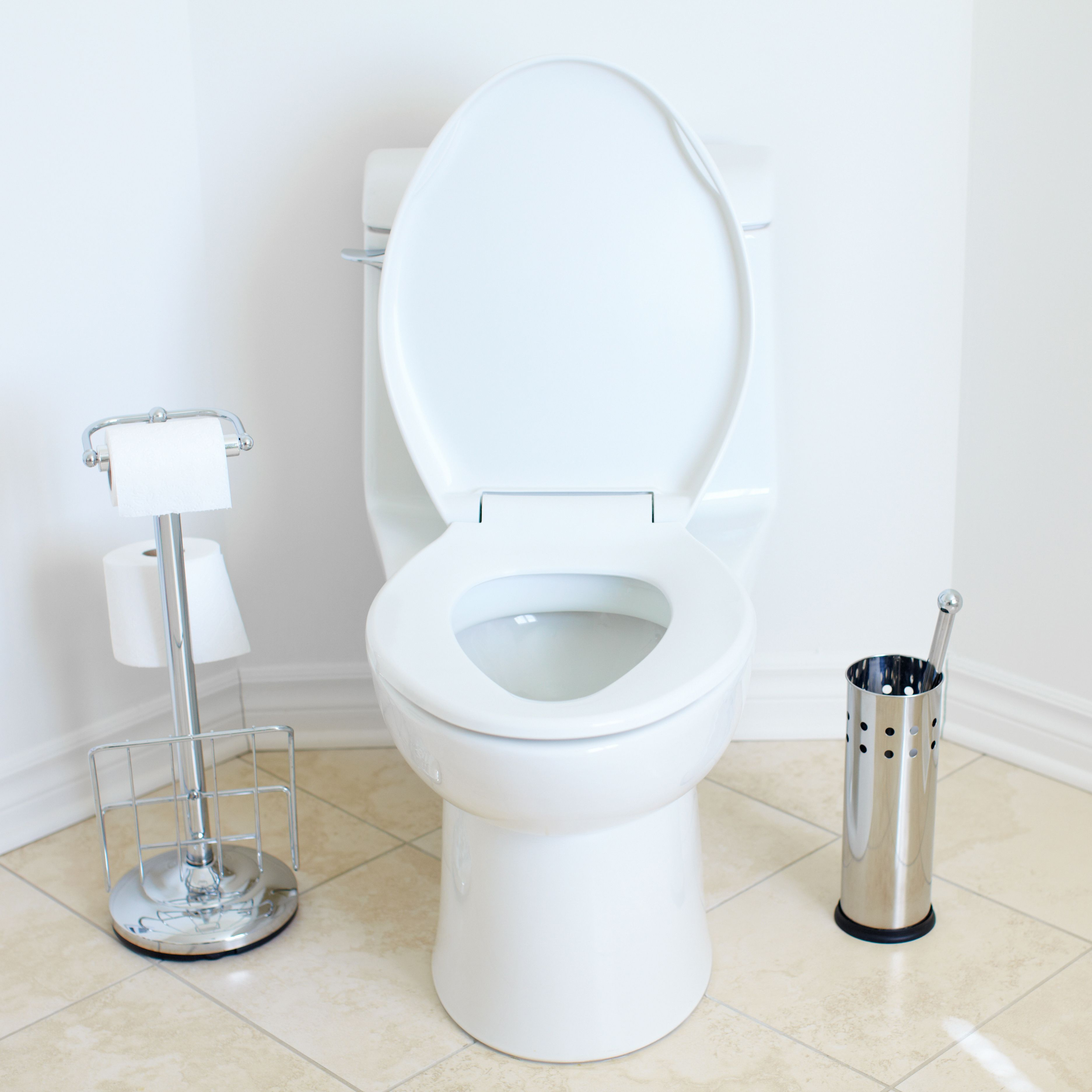 What to Do When Your Toilet Floods Toilet and Unclogging drains