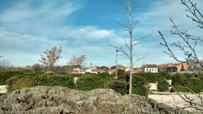 Vista del casco antiguo desde el Parque Miralrio.