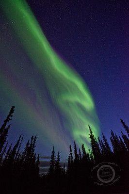 - northern lights - priska wettstein photography, Dawson City, Yukon, Canada