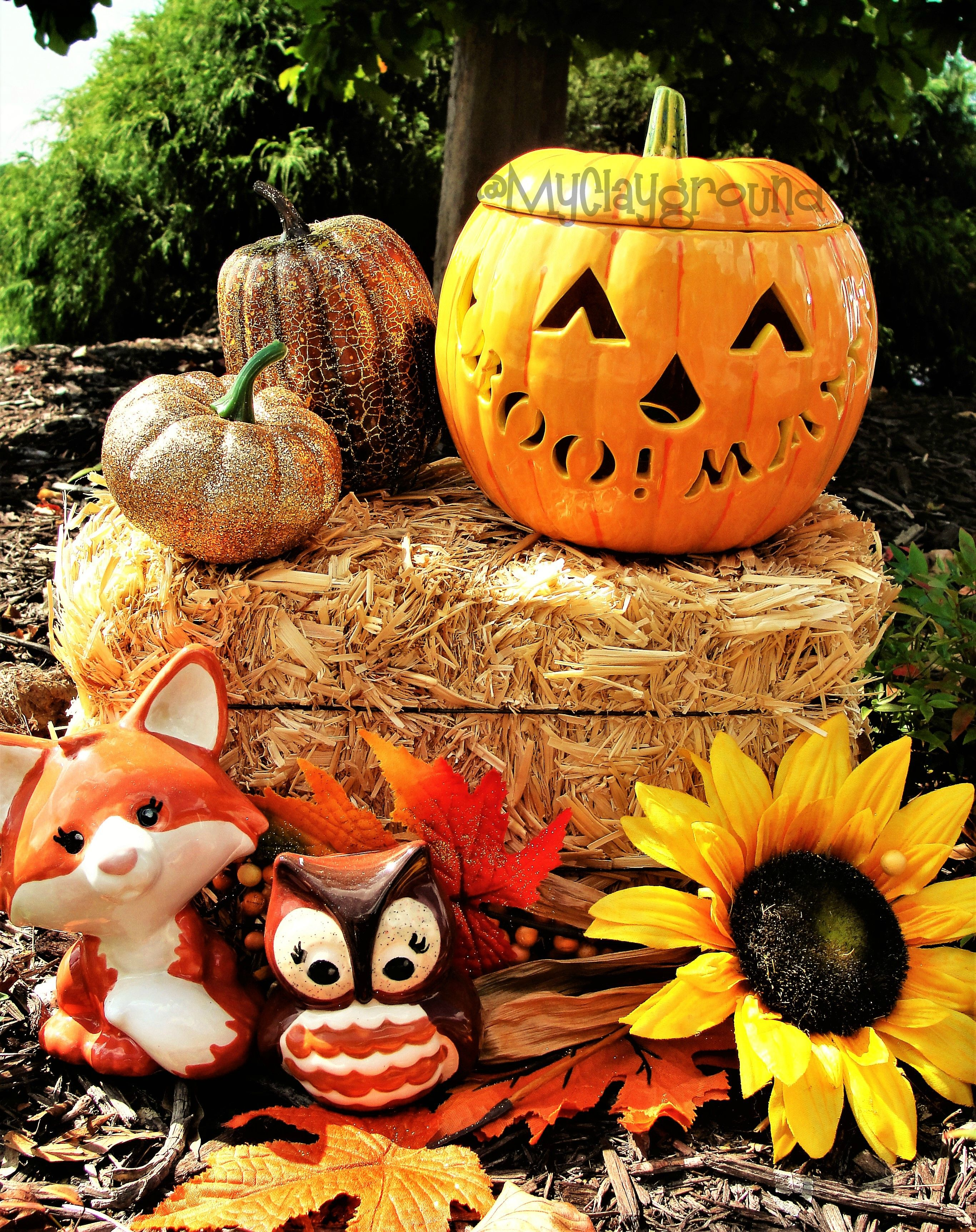 Pottery Painting Pumpkin Fall Fox Owl