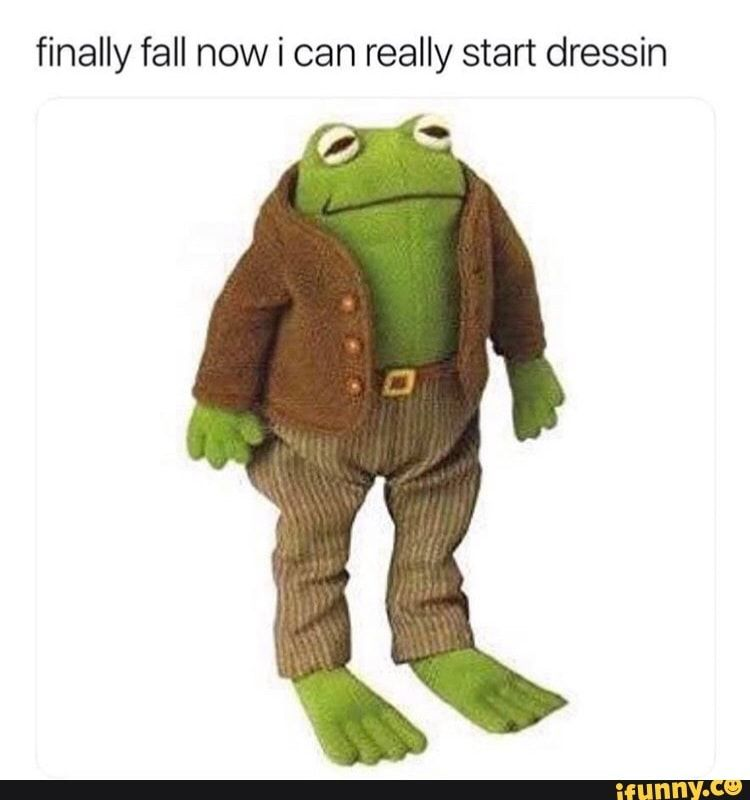 Finally Fall Now I Can Really Start Dressin Ifunny Cute Memes Funny Memes Cute Frogs