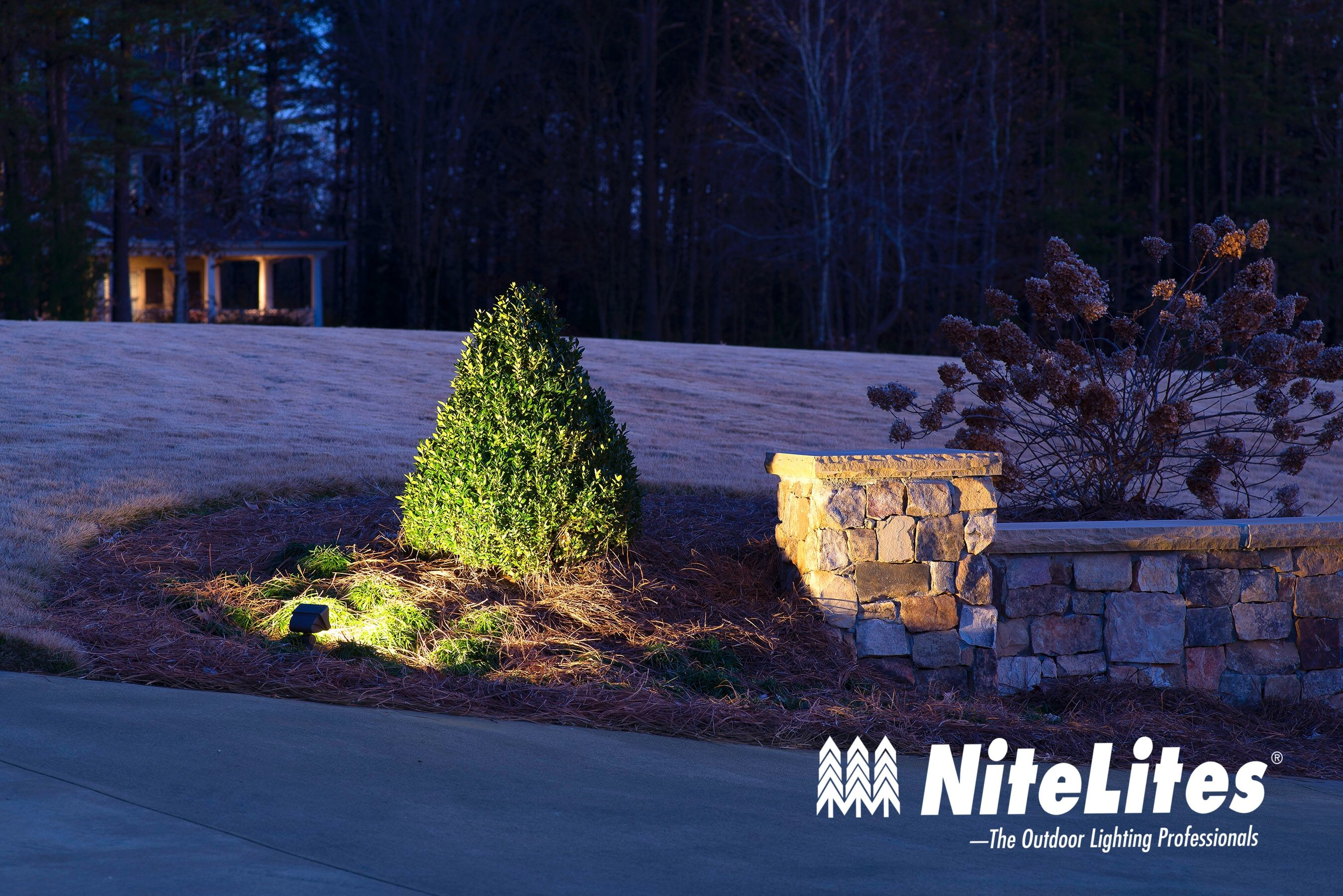 User Submitted Photo Outdoor Landscape Lighting Landscape Lighting Wall Wash Lighting
