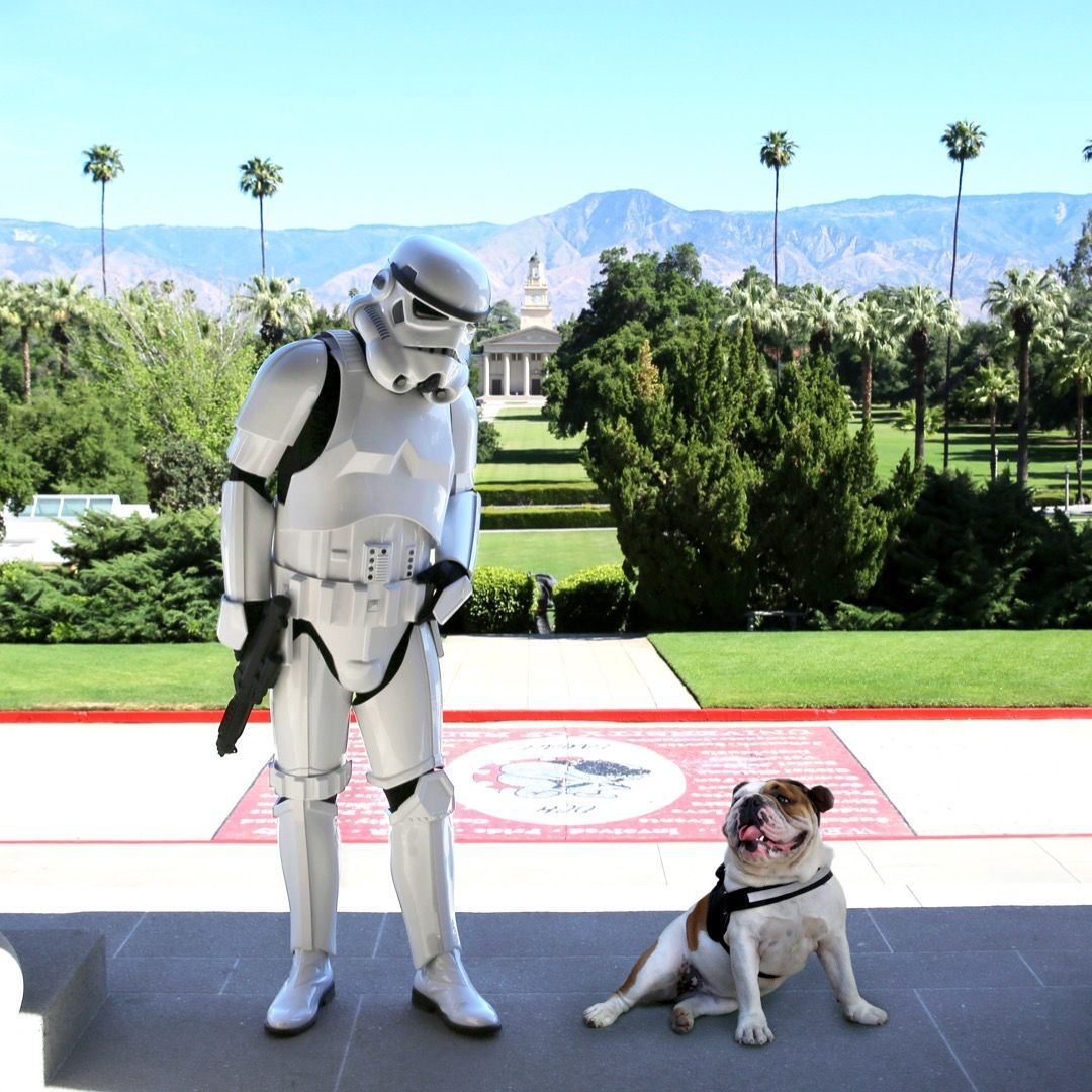 Princess Addie Tames A Storm Trooper On The Redlands Campus Happy