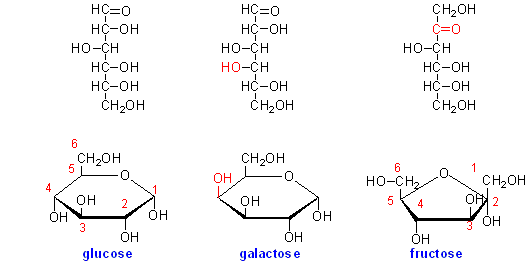 L Galactose Glucose, fructo...