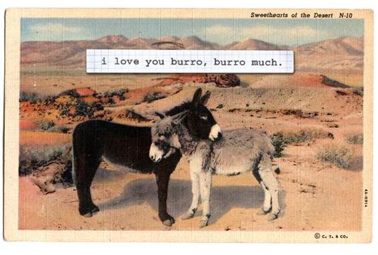 burro sweet