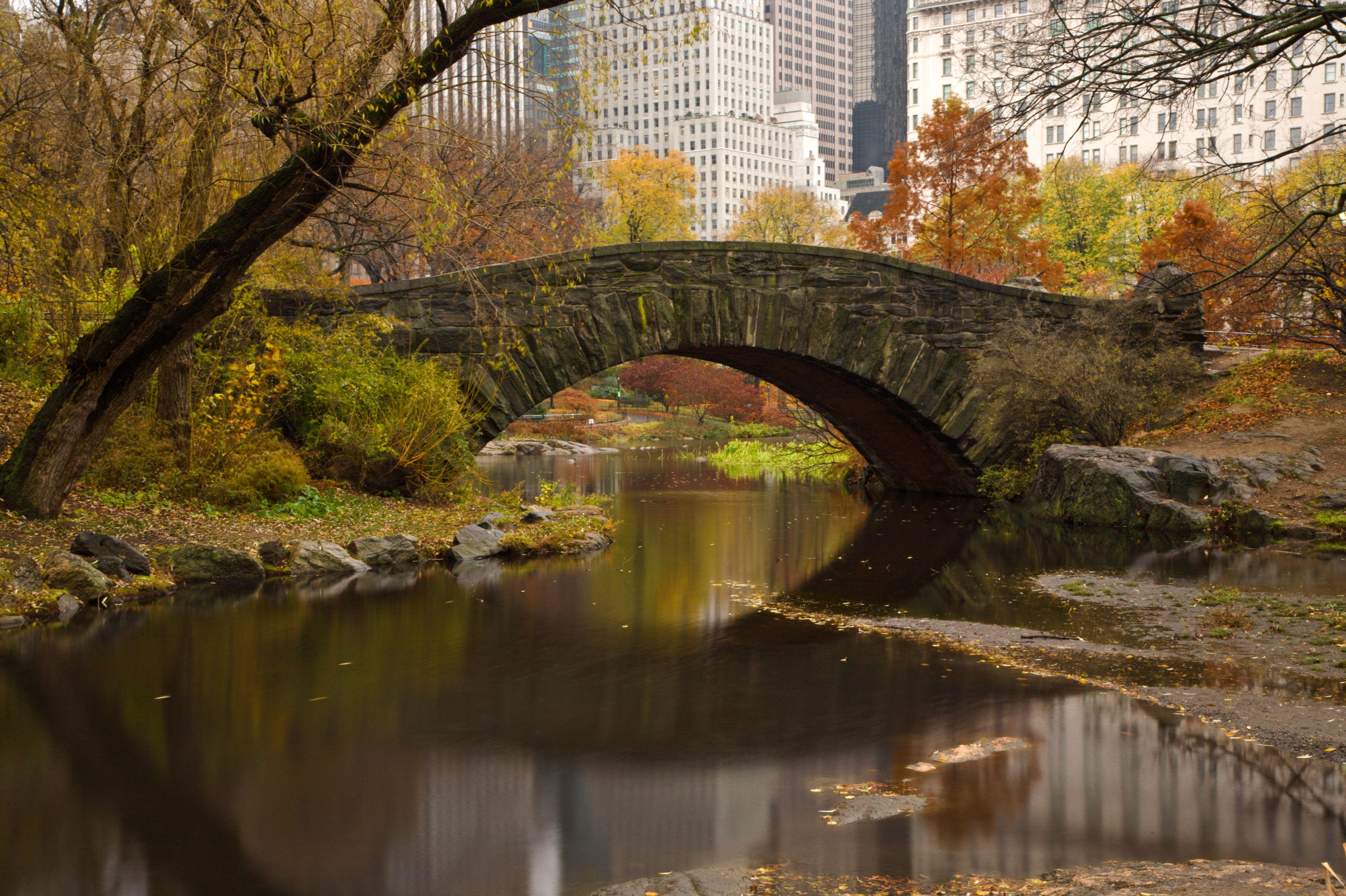 nyc in november Gapstow bridge