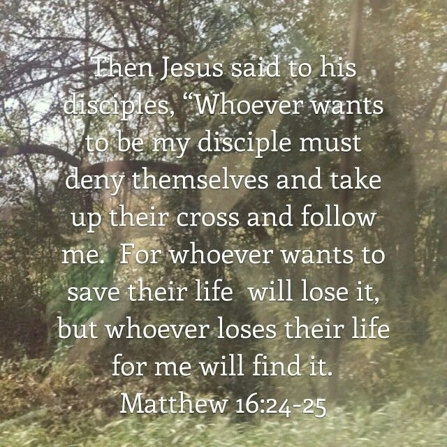 Matthew 16:24-25 | Matthew 16 24, Jesus quotes, In christ alone