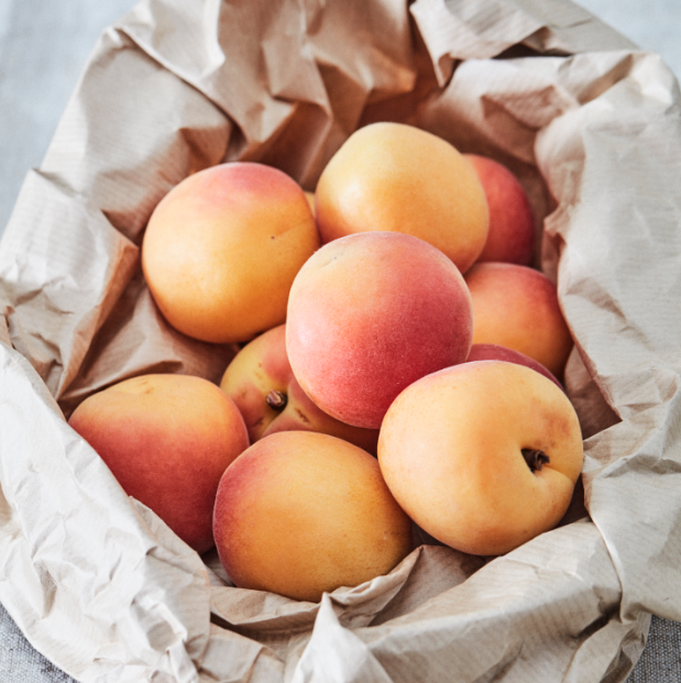 So round and fleshy, so juicy and sweet… Our blushing apricots are at the height of their taste right now!