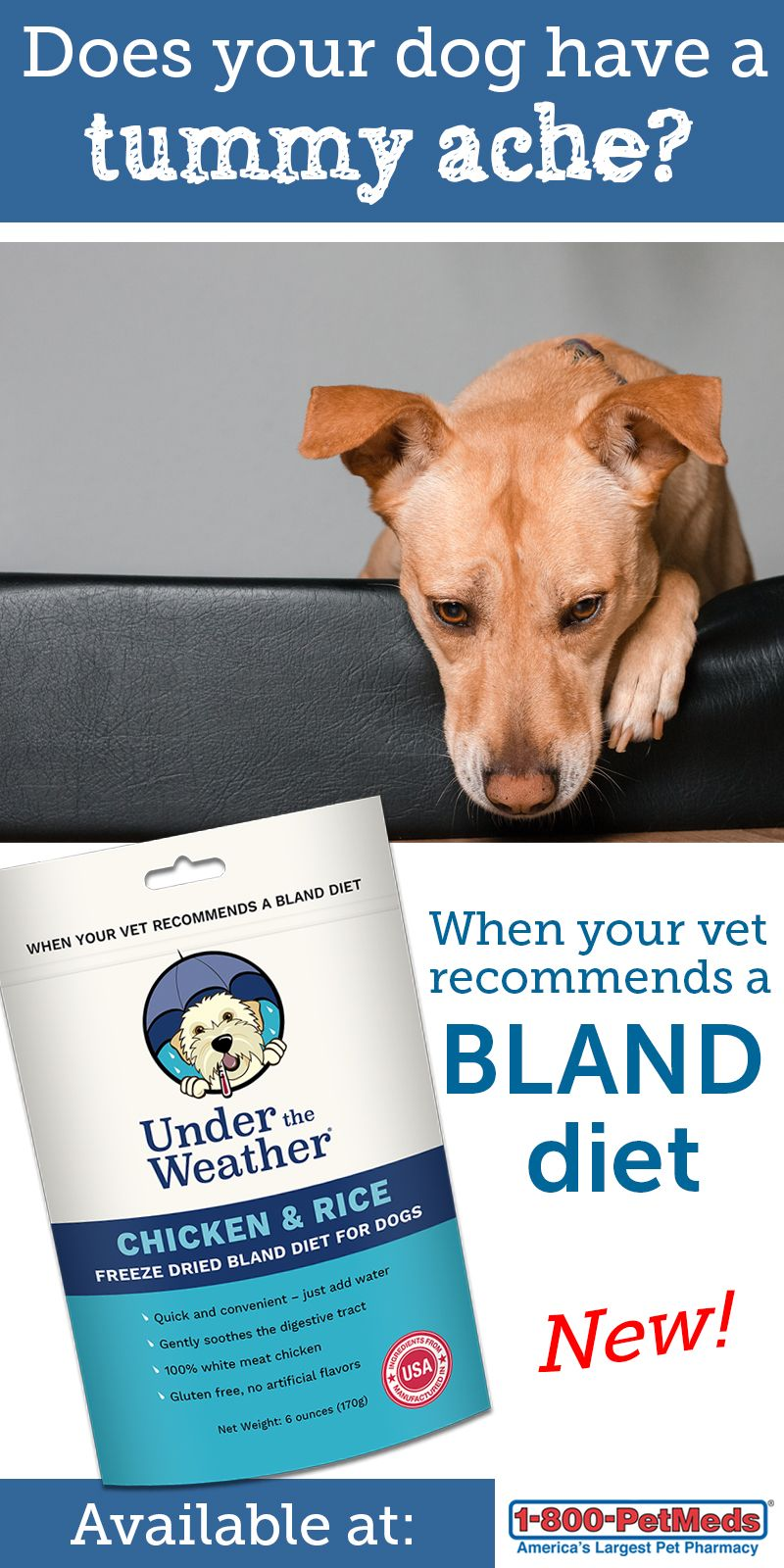 Under The Weather Chicken Rice Freeze Dried Bland Diet For Dogs