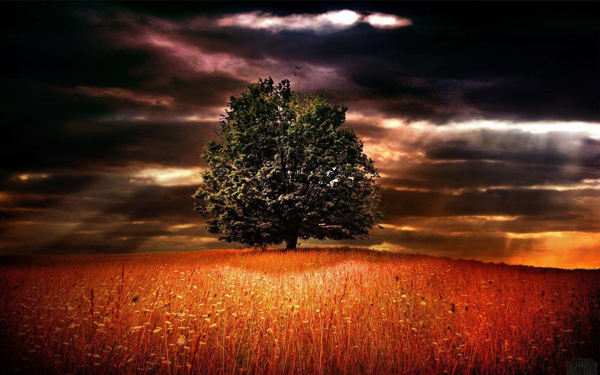 Paisagem_imagem_linda_ (59) Natureza bela, Lindas