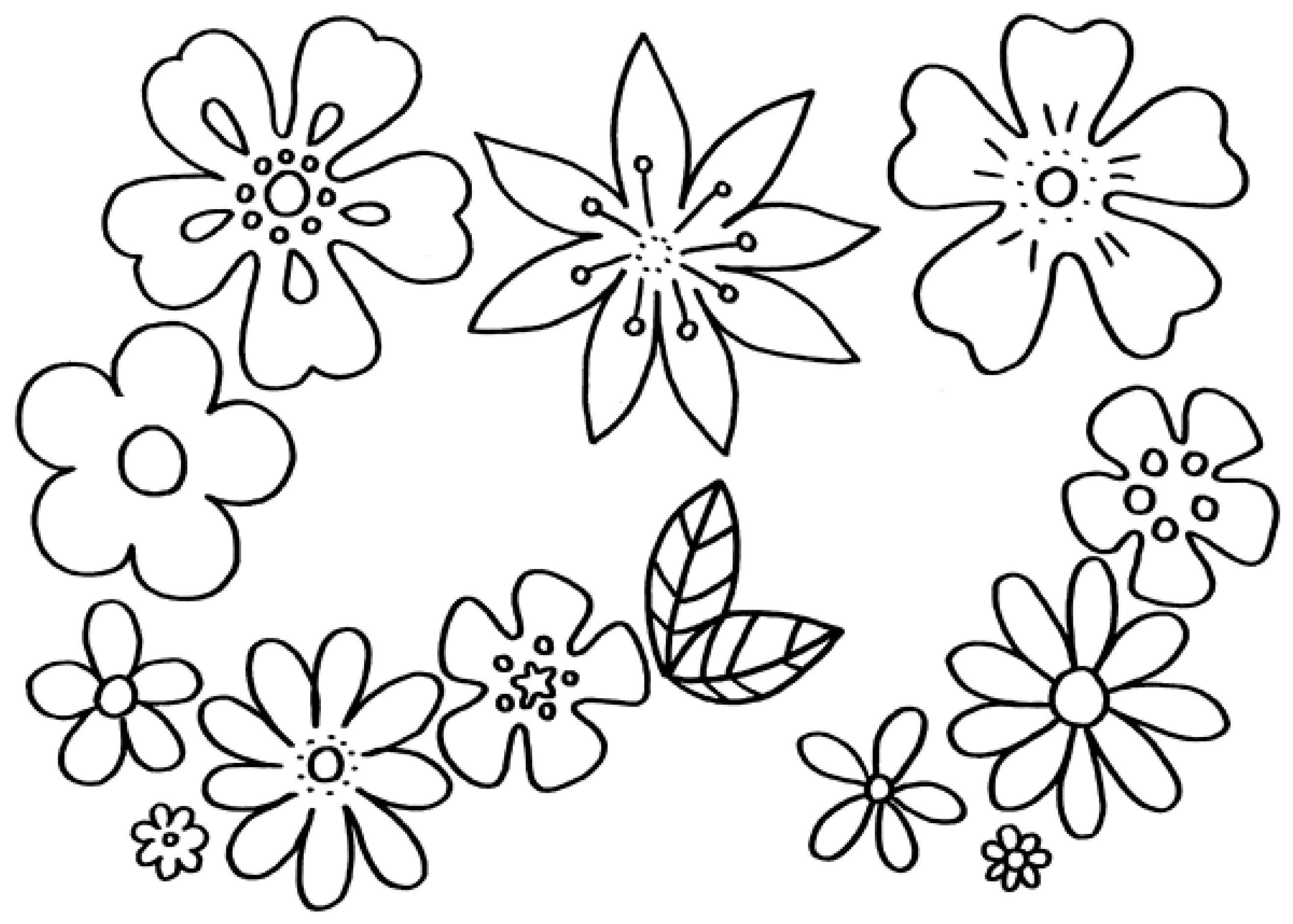 blumen malvorlage zum ausdrucken  Malvorlagen blumen, Blumen