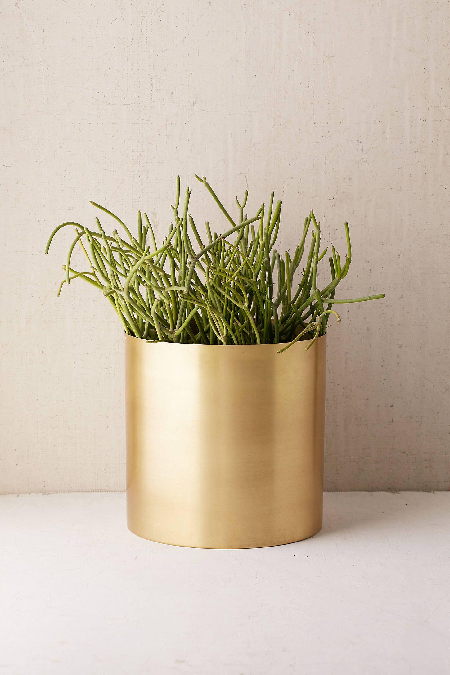 Mod Metal 10 Planter Cosas Bonitas Suculentas Plantas