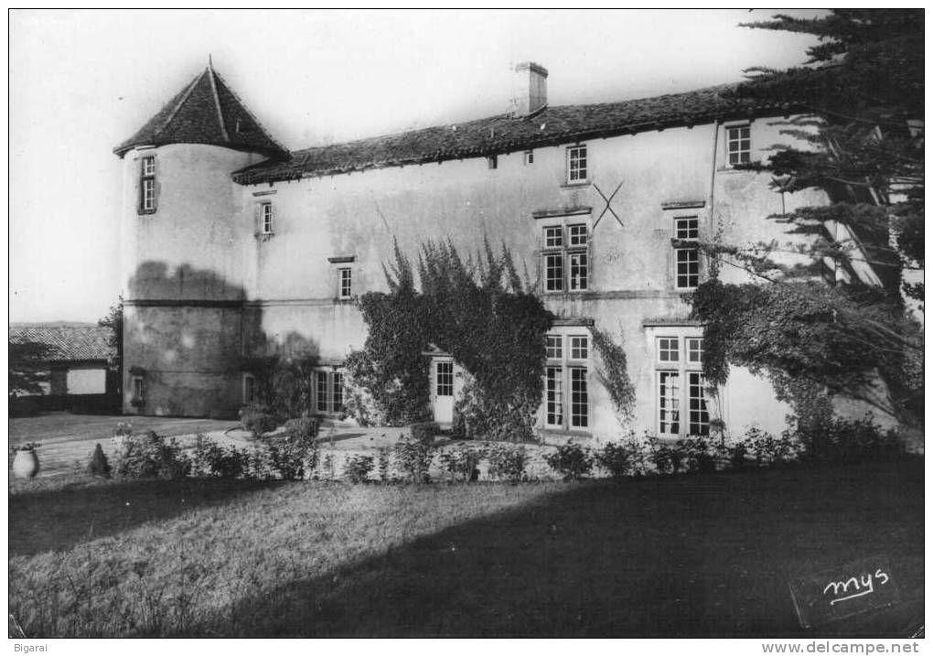 Saint Andre chateau - Delcampe.net