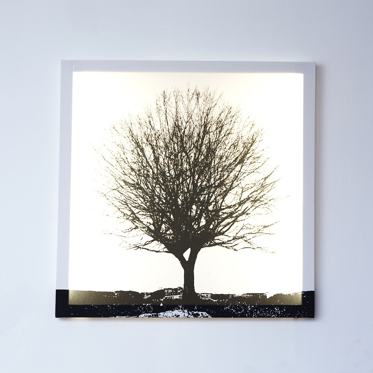 ACHICA Duffy London Tree White and Black, Glo Canvas