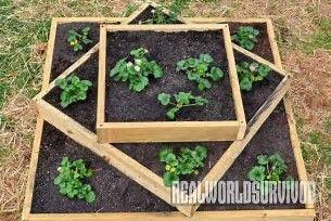 Image Result For Multi Level Planter Box Plans Garden Boxes Raised Diy Raised Garden Raised Garden