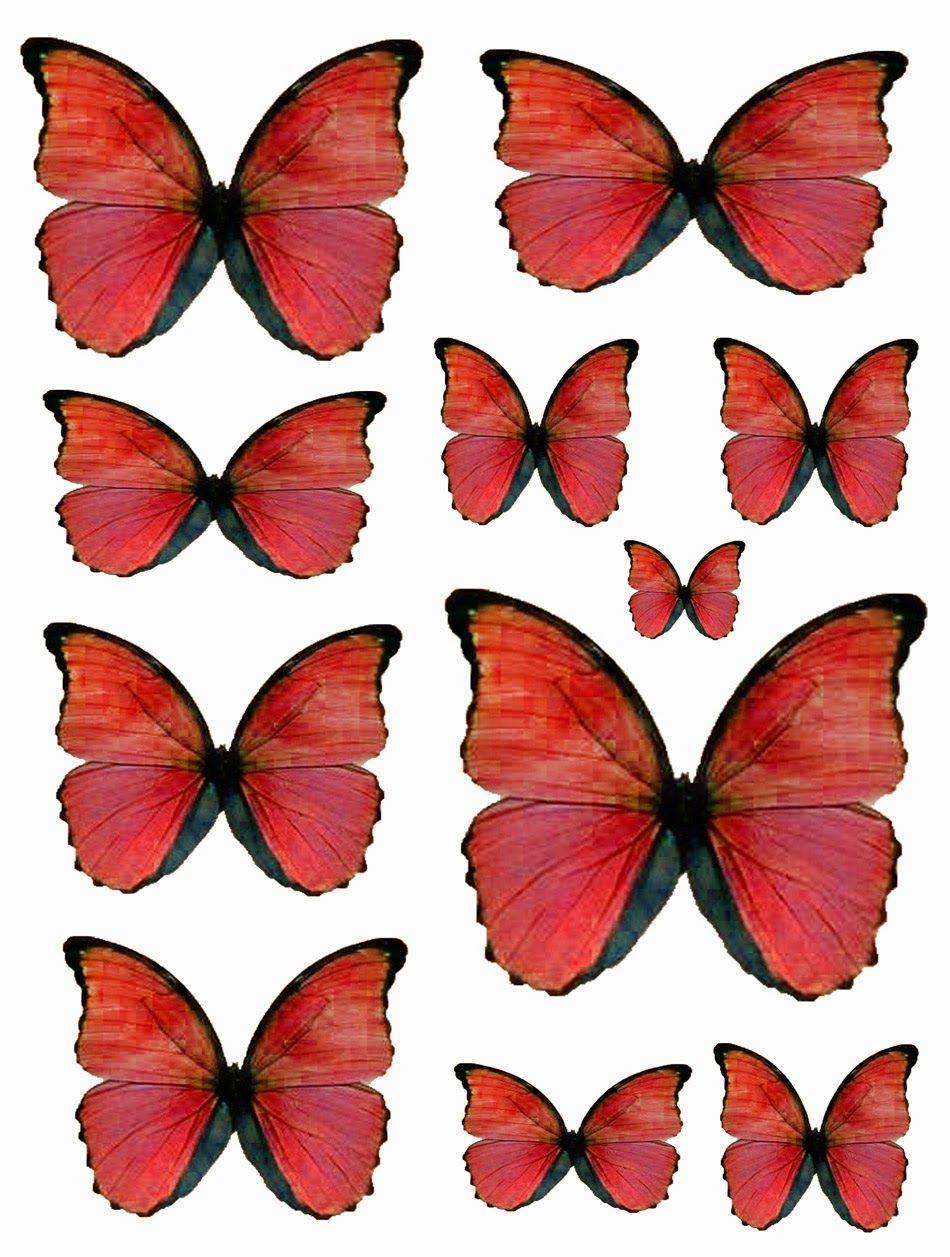 Free Red Butterflies Butterfly Printable Butterfly Art