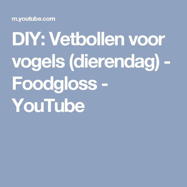 DIY: Vetbollen voor vogels (dierendag) - Foodgloss - YouTube