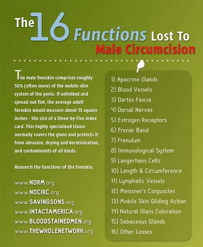 16 Functions Lost To Male Circumcision Circumcision Mama
