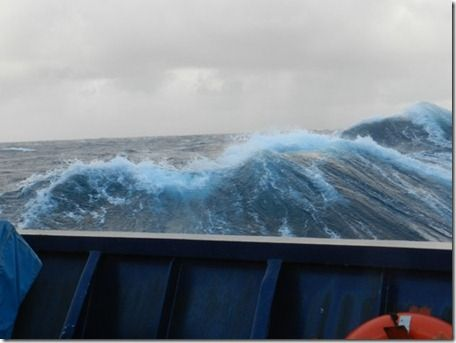 Natural Remedies For Battling Seasickness as a Seafarer | Crew Center