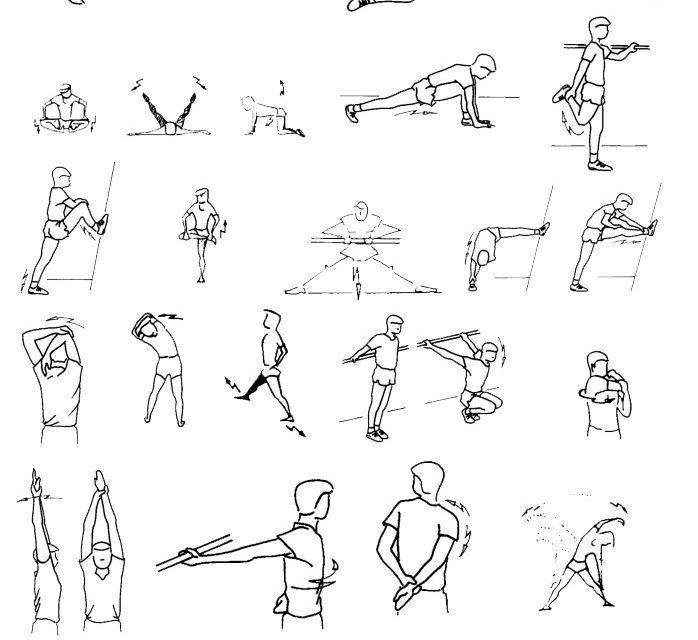 Guia 4 Capacidades Fisicas Basicas La Flexibilidad Ed Fisica