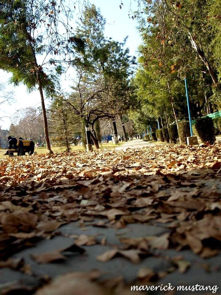 Abbottabad And Autumn
