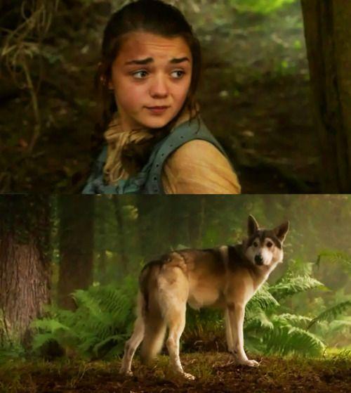 Arya & Nymeria    Game of Thrones